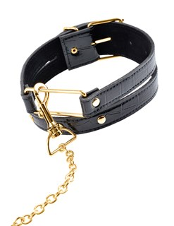 Gold Collar & Leash